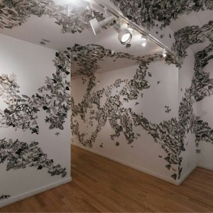 Moth Migration Project USA by Hilary Lorenz