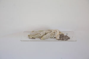 VENITIA NEVILL Unspoken Words Ash, earth and glove on Perspex shelf 30 x 16 cm