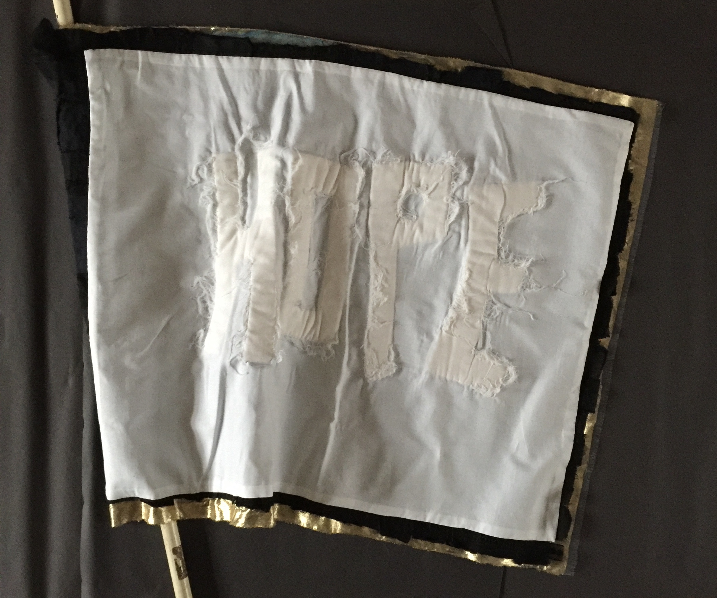 Sue Evens - HOPE flag